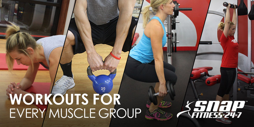Workouts for Every Muscle Group – Snap Fitness USA